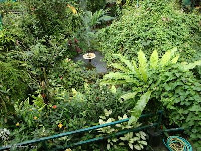 Butterfly Park, Kuala Lumpur Photo 1