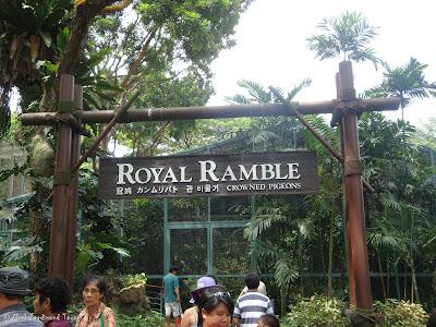 Jurong Bird Park - Royal Ramble Crowned Pigeons Photo 3