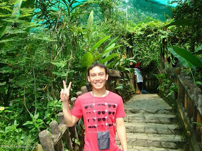 Butterfly Park, Kuala Lumpur Batch 2 Photo 1