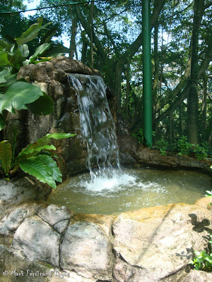 Sunway Lagoon - Wildlife Park Photo 4