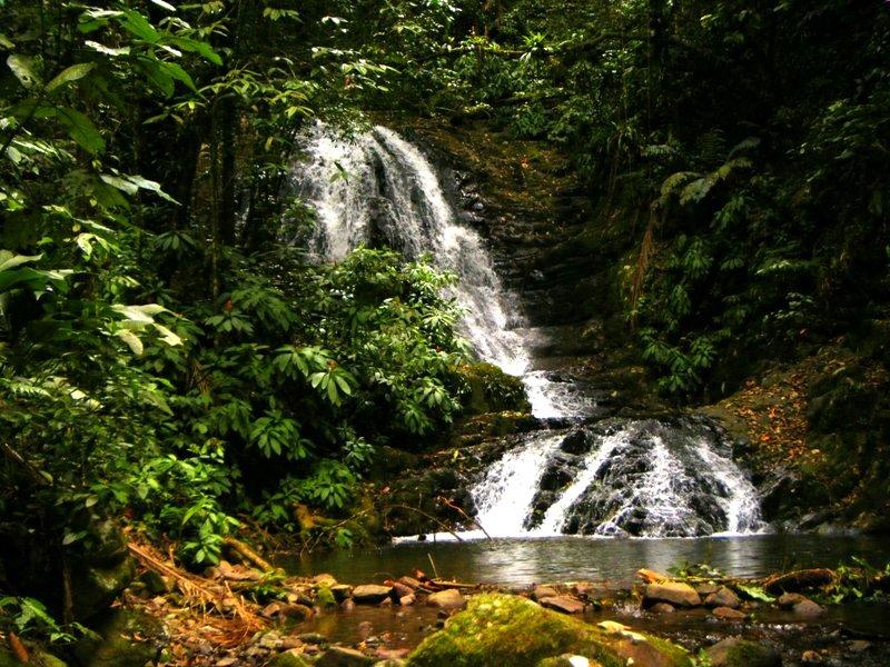 Paisagens Naturais   Cachoeiras  1