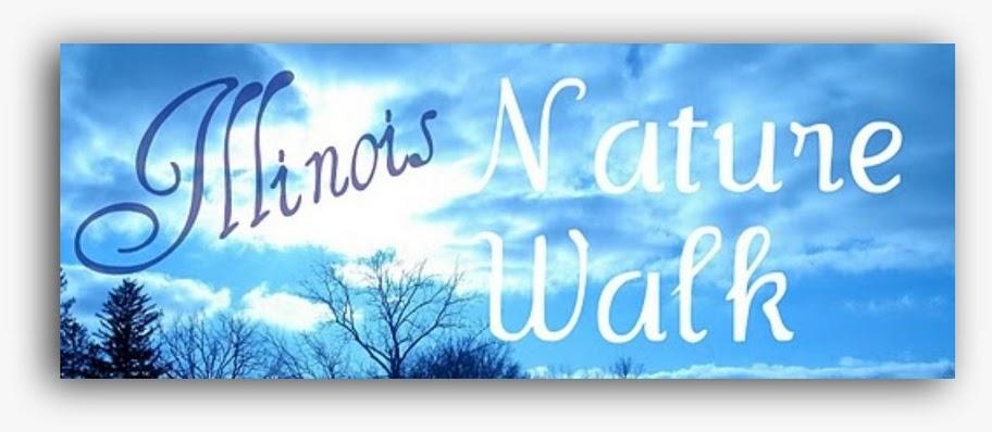 Illinois Nature Walk at Ballard Nature Center and Beyond