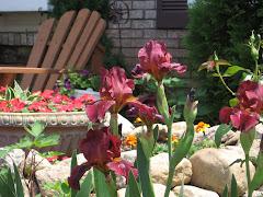 Vstupte do mojej zahrady