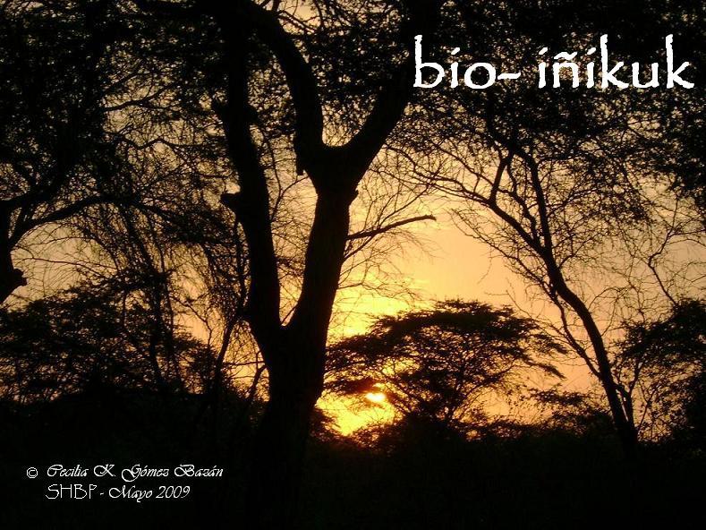 bio- iñikuk