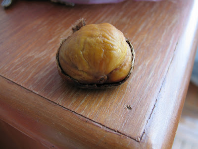 http://4.bp.blogspot.com/_yaSW8ZiJCpM/S8c0lPV2NNI/AAAAAAAAAxE/r9QgMyCtD0s/s1600/buah+berangan.jpg