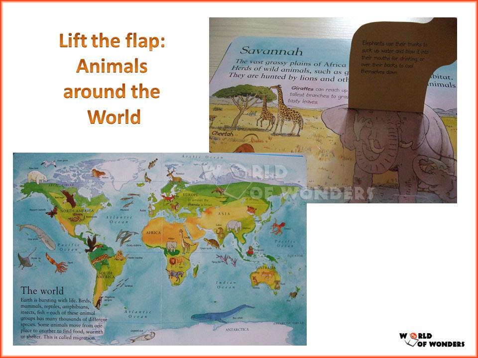 Democracies Around The World Animals Around The World
