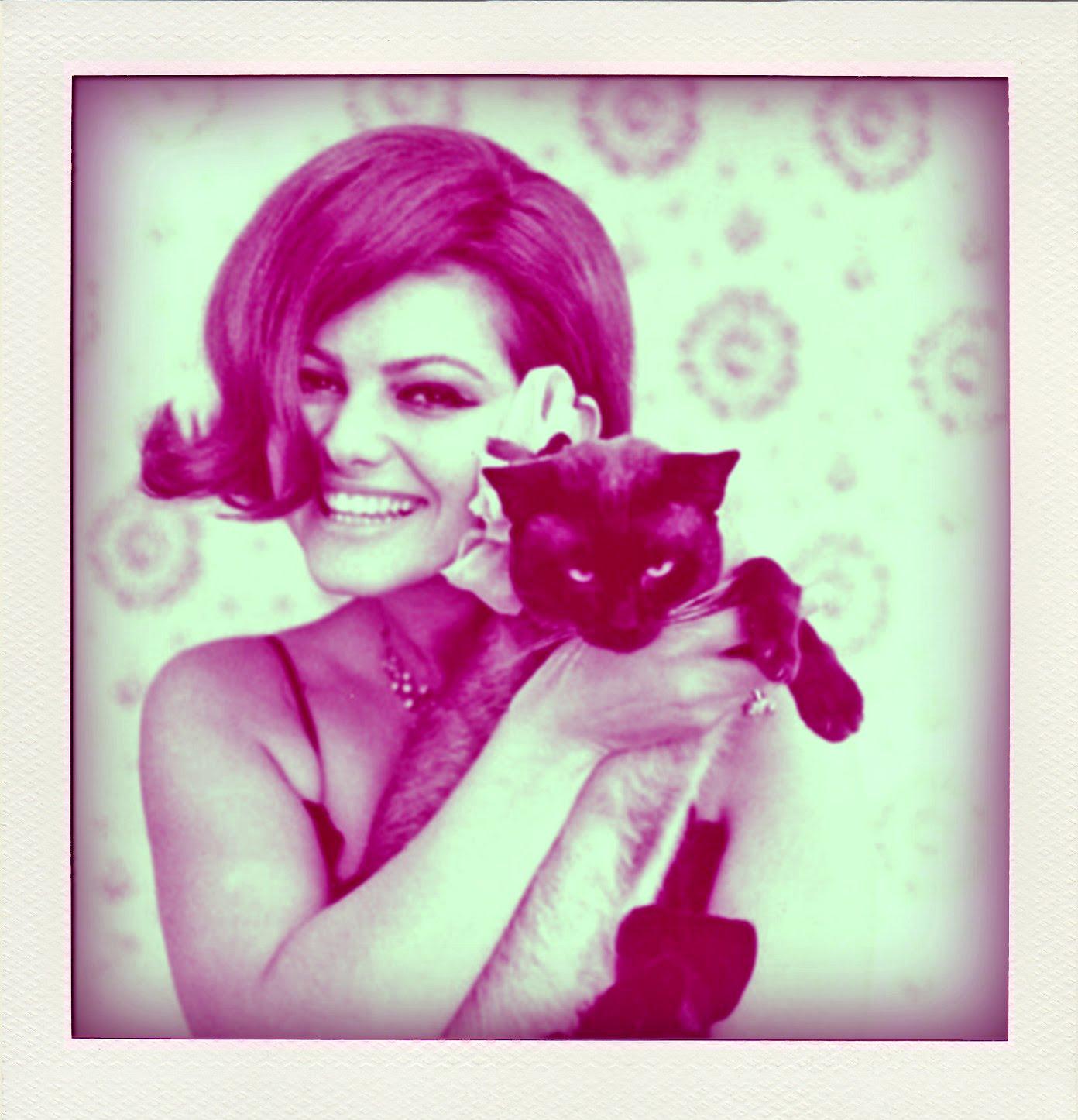 http://4.bp.blogspot.com/_yavP5M_4h14/TAvDTA_W6LI/AAAAAAAAAmM/368FYsvwNo0/s1600/Claudia-Cardinale-Cat.jpg