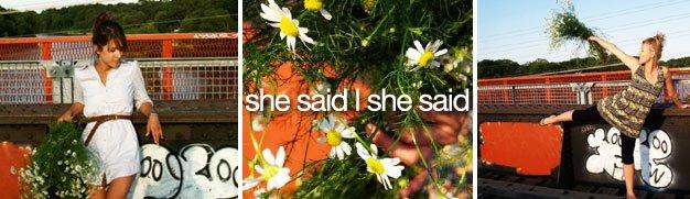 she said | she said