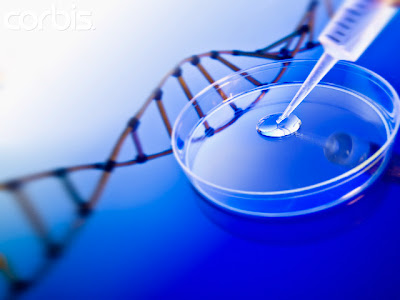 the moral implications of genetic engineering Some believe genetic engineering is moral because it can be usedfor the good of mankind.