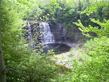 Salmon River Falls