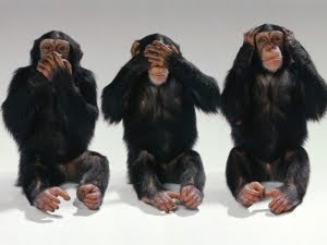 Three monkeys. See, hear and speak no evil