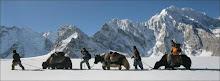 Trekking & Adventure