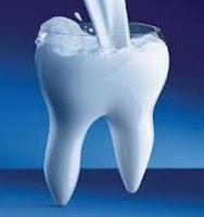 dente leite canal