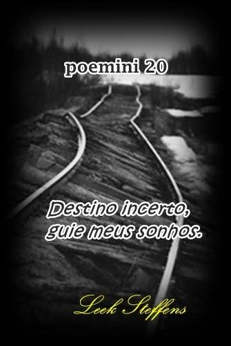 poemini 20