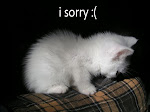 :: am sorry all ::