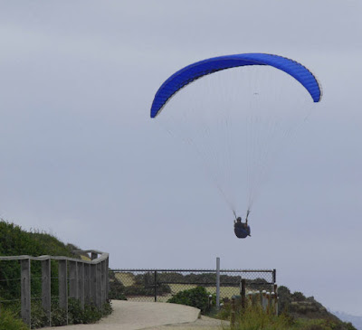 paragliding clearing the fence
