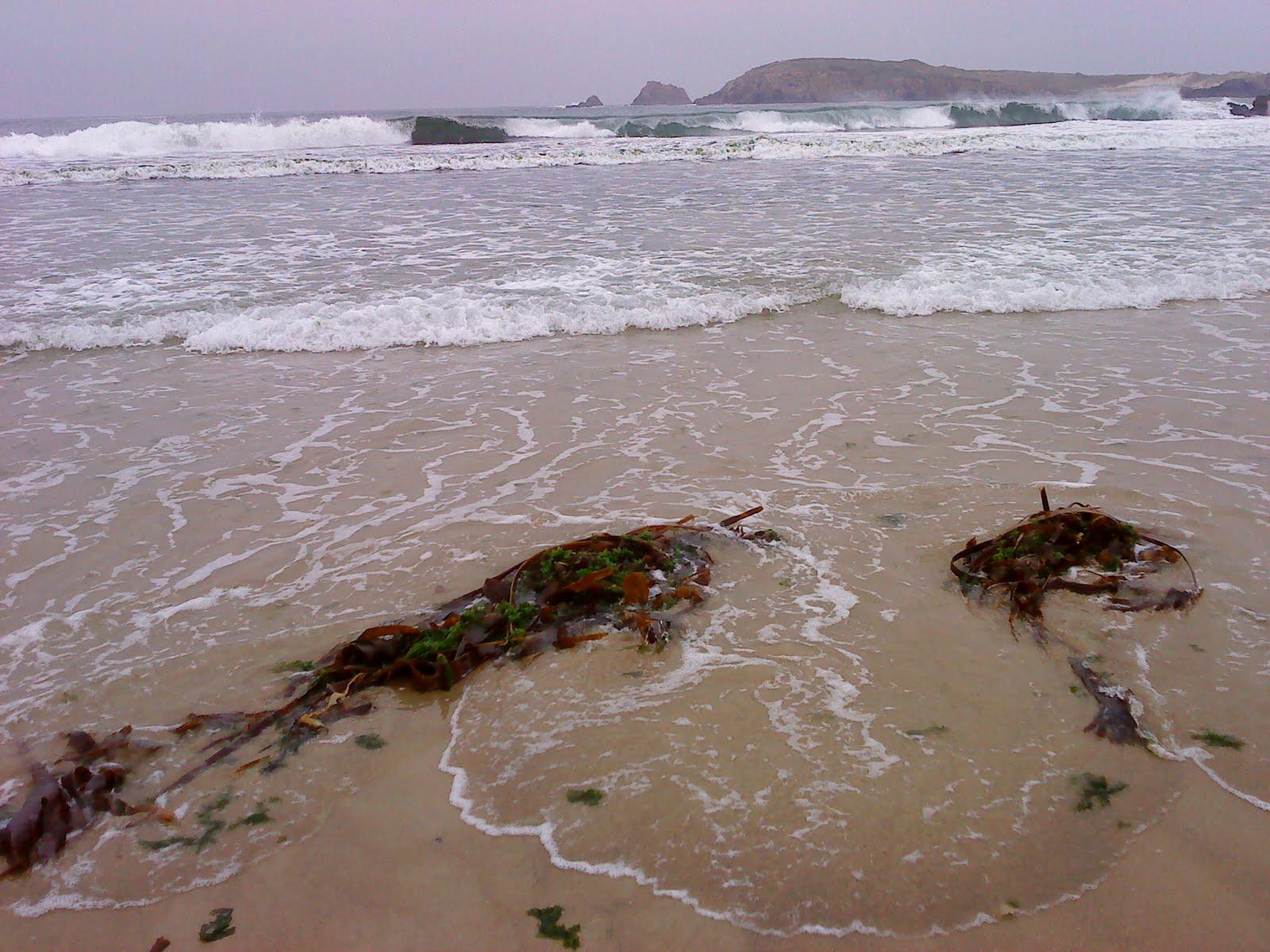 the sea from Meirás Beach on Sunday