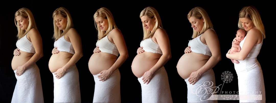 Pregnancy Progression - Jacksonville, FL Maternity Photographer