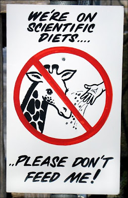 Don't feed sign