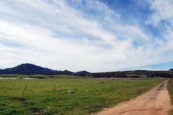 Highland Valley Views