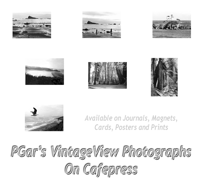 PGar's VintageViews on Cafe Press
