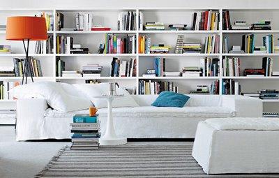 Bookshelves in Living Rooms