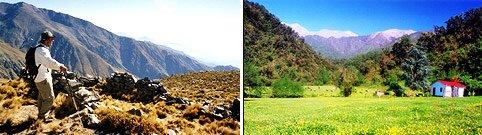 Parque nacional : Los Alisos