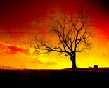 Fire in the Sky an 8.5 x 11 fine art print -$18.50-