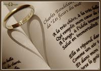 Divórcio e Divisão de Bens - Piadas