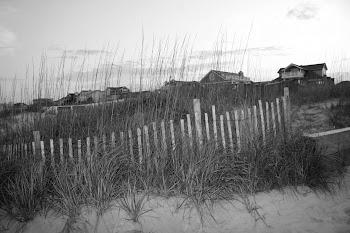 dunes pic