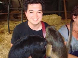 Two cheeky monkeys