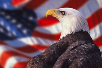 Bald Eagle in front of a waving American flag