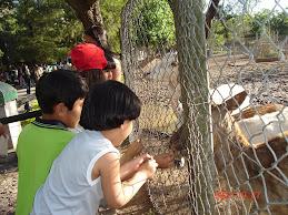 Todos al Zoológico