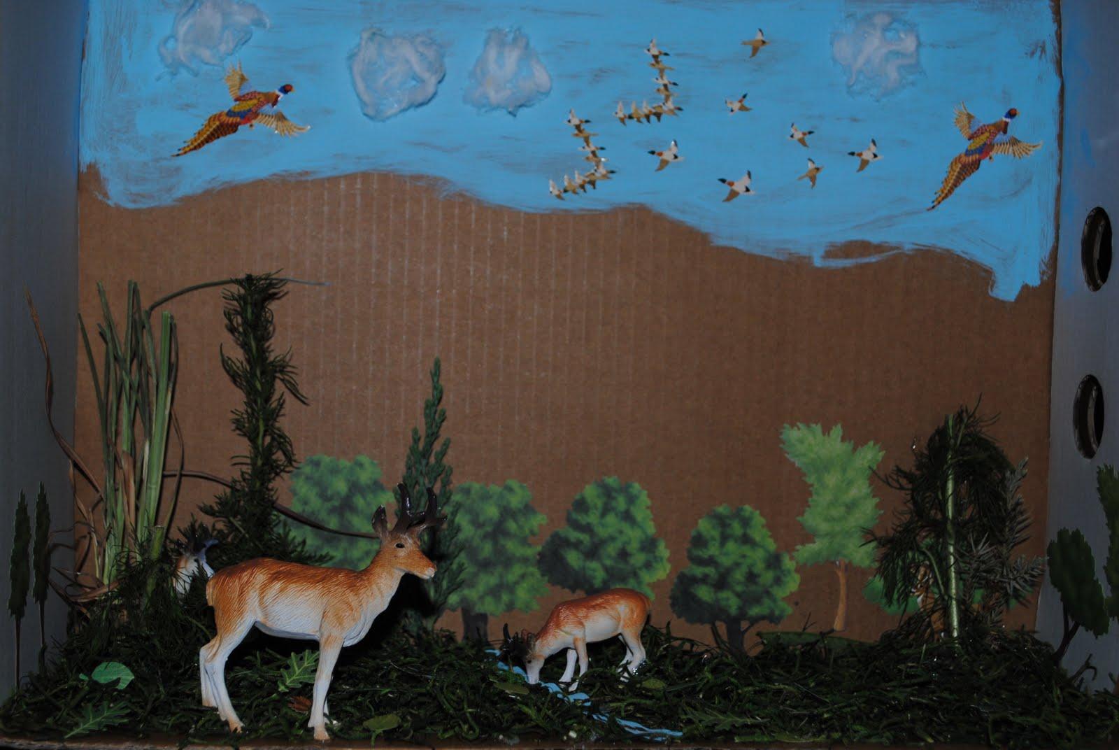 animal habitat projects