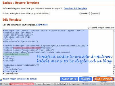Screen shot: Blogger's Edit Template to enable display of Labels dropdown menu in blog