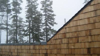Erin Curry art- Haystack rooftop