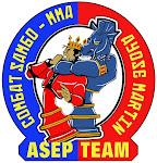 Asep-Team