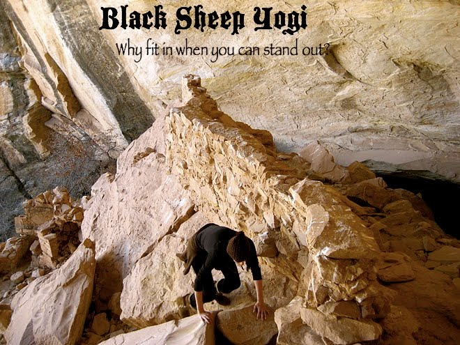 Black Sheep Yogi
