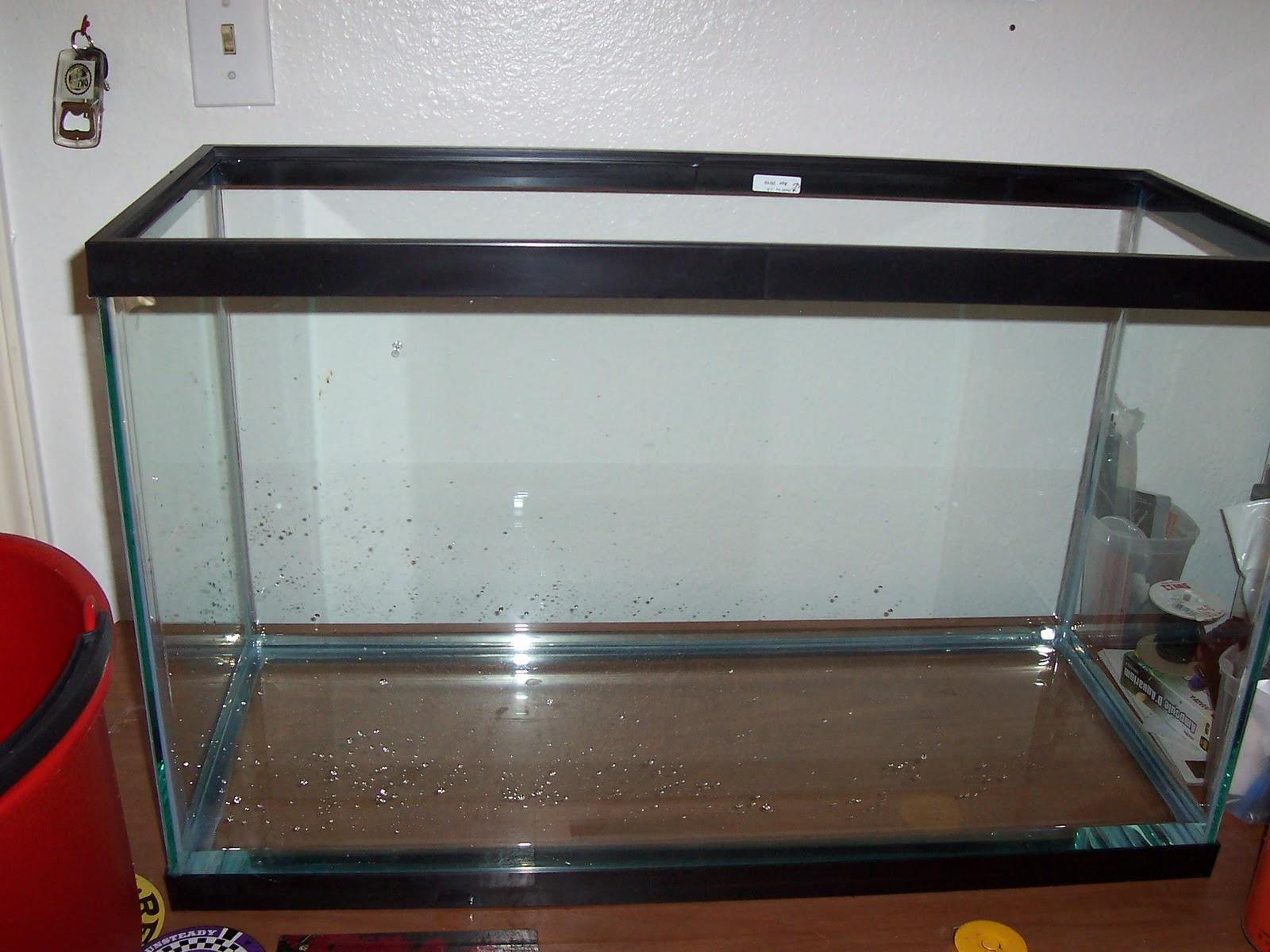 Glass 29 Gallon Aquariums
