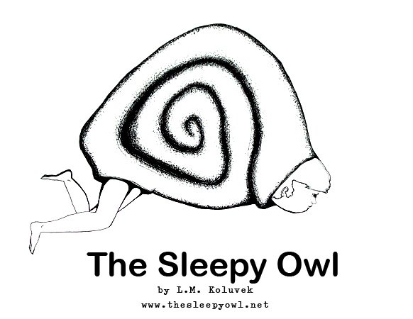 The Sleepy Owl Project