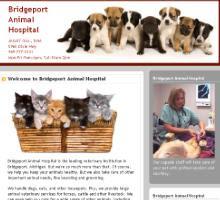 Bridgeport Animal Hospital