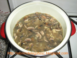 reteta couscous cu ciuperci