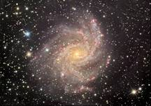 Spiral Galaxy NGC 6946