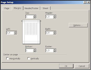 Excel page setup