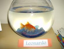 Leonardo - a nossa mascote