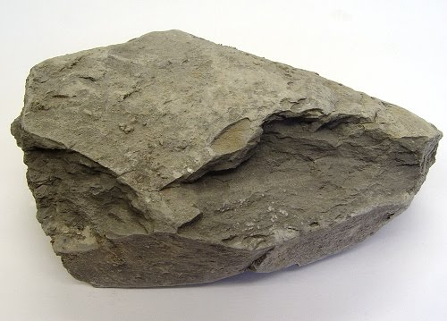 "Wallpaper World: Sedimentary Rock ""Shale"""