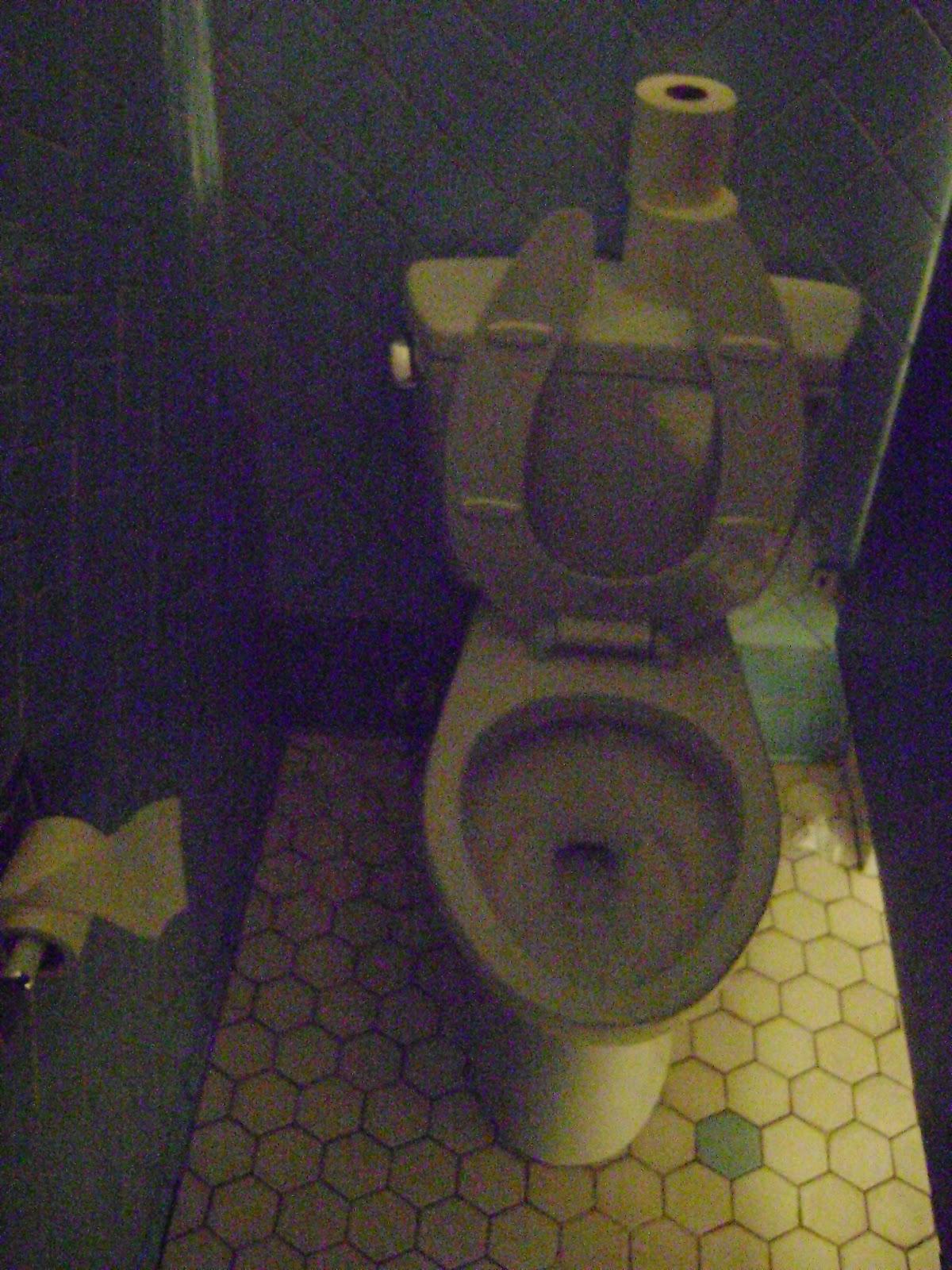 Judy Garland Died On Toilet