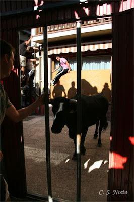 Protegidos de la vaquilla tras las rejas