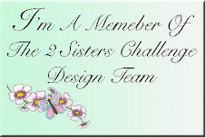 Past DT Member for The 2 Sisters Challenge Blog