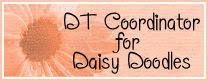 DT Coordinator for Daisy Doodles